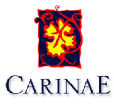 Logo for:  CarinaE S.A.