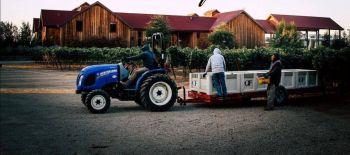Photo for: Oak Farm - Vineyard in the heart of Lodi Wine Country
